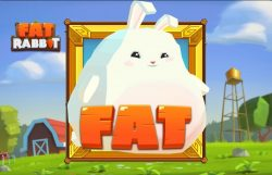 Fat Rabbit